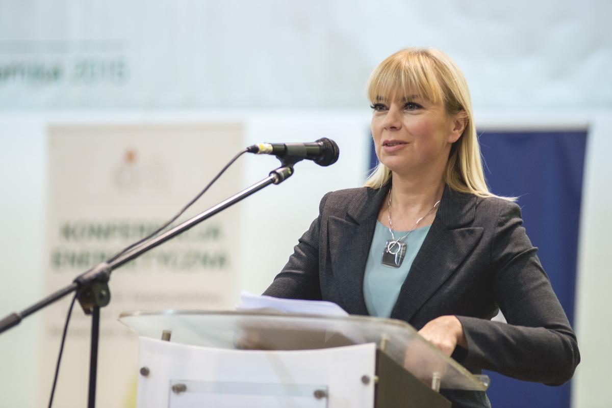 Konferencja Energetyczna 2015